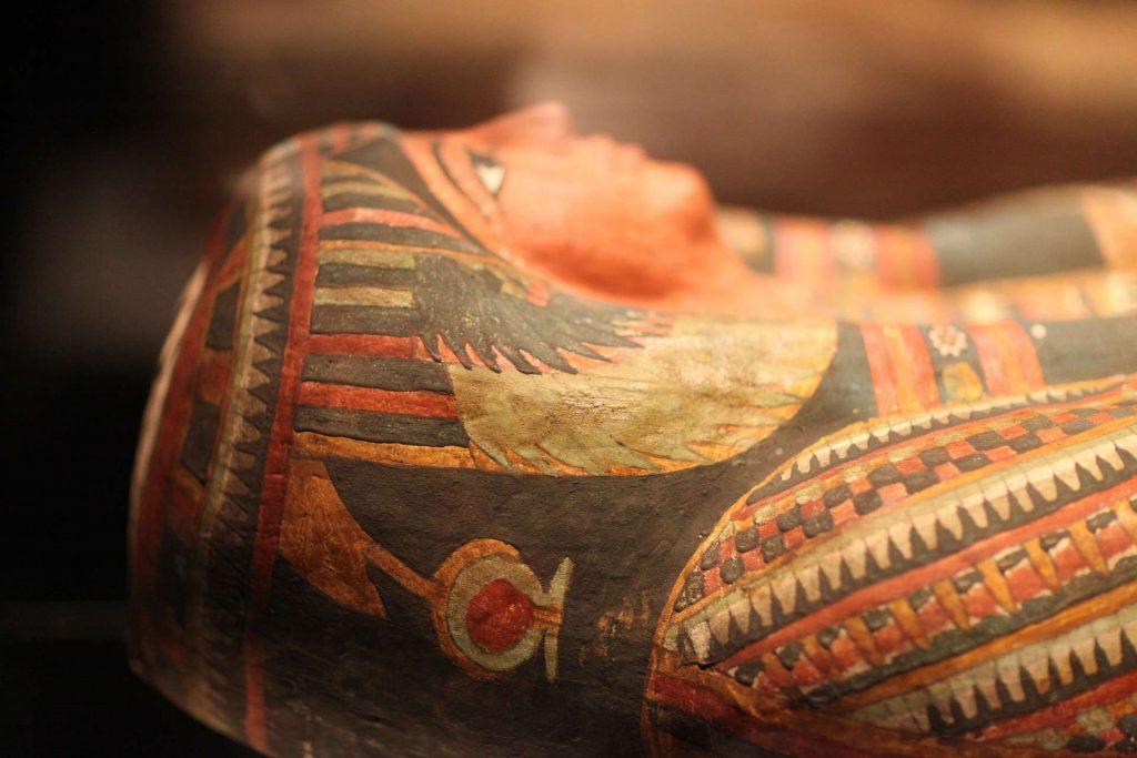 mummia sito web immagine