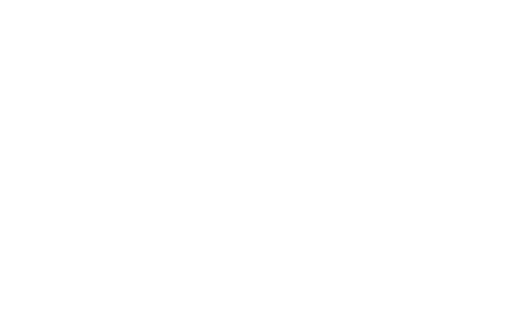 portfolio-logo-vini-furbi-bianco