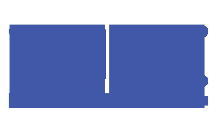 portfolio-logo-wire-blu