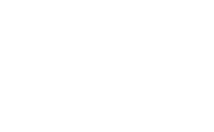 portfolio-logo-fabio-borsato-bianco